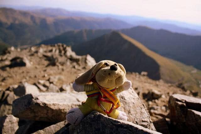 Torreys Peak summit.
