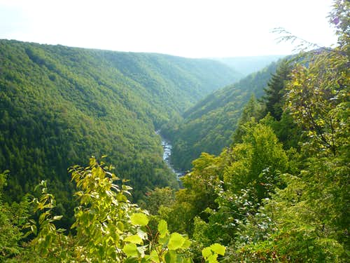 Blackwater Falls Canyon