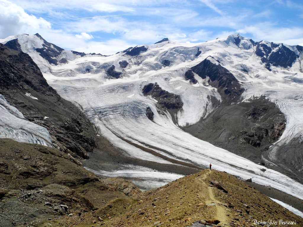 The mighty Forni Glacier