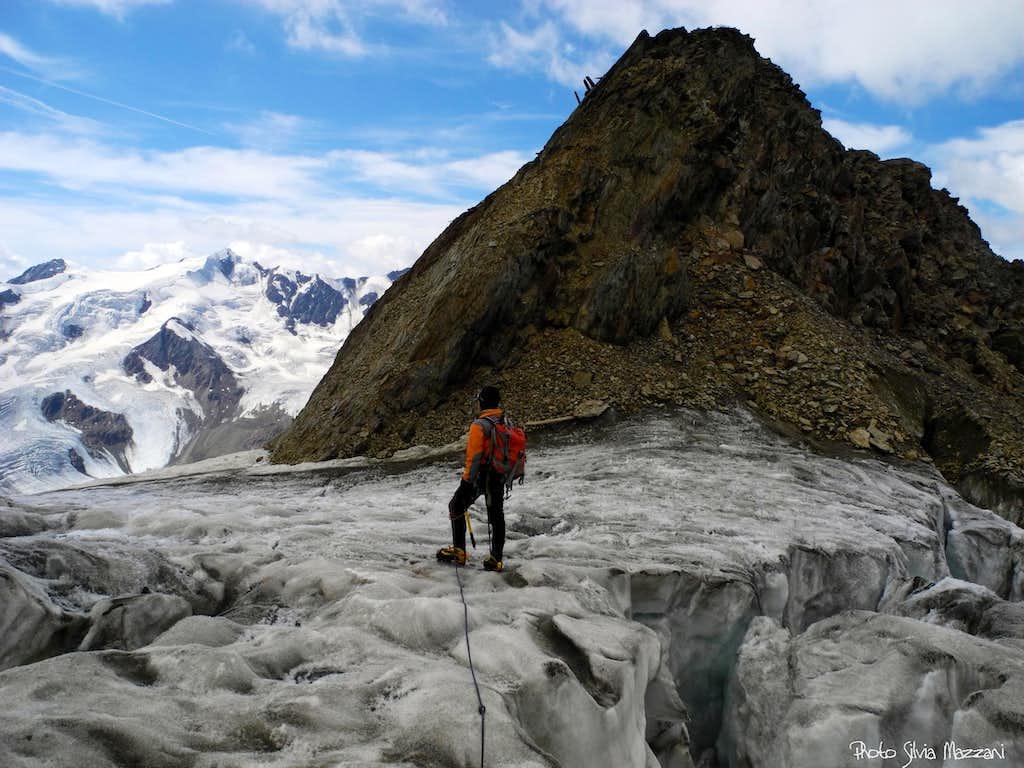Hot summer, black glacier (Palon de La Mare)