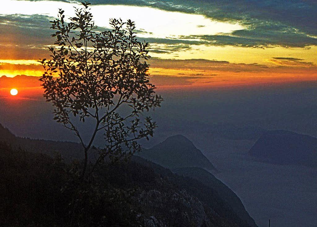 Dawn below Prsivec