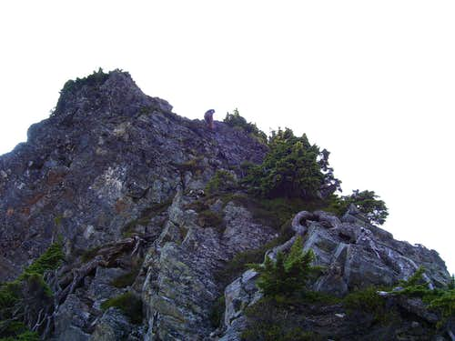 Rappelling the crux on Sheep Gap Mountain