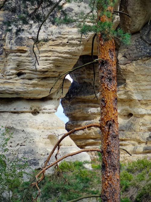 Natural arch in Hruboskalsko