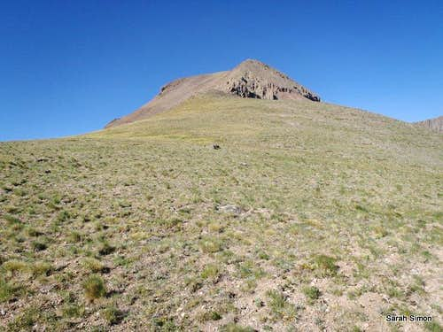 NE ridge of East Buffalo Peak