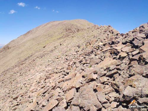 West Buffalo Peak talus