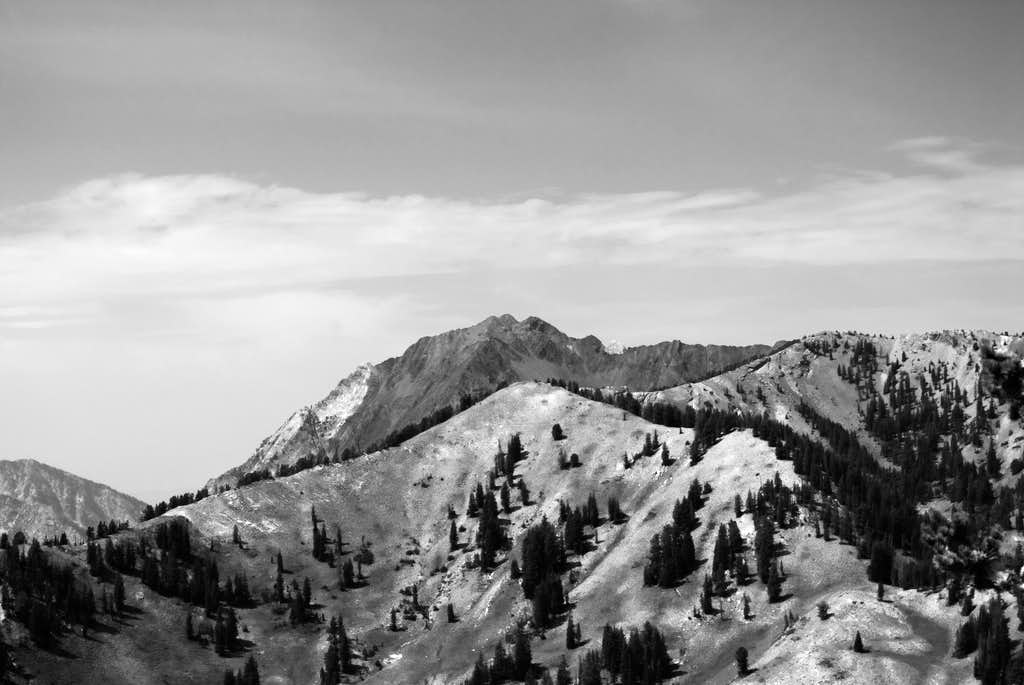 Mt. Superior from Grizzly Gulch