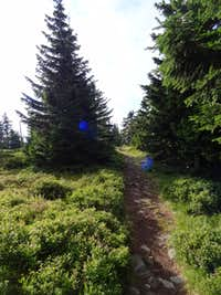 Trail on top of Czoło