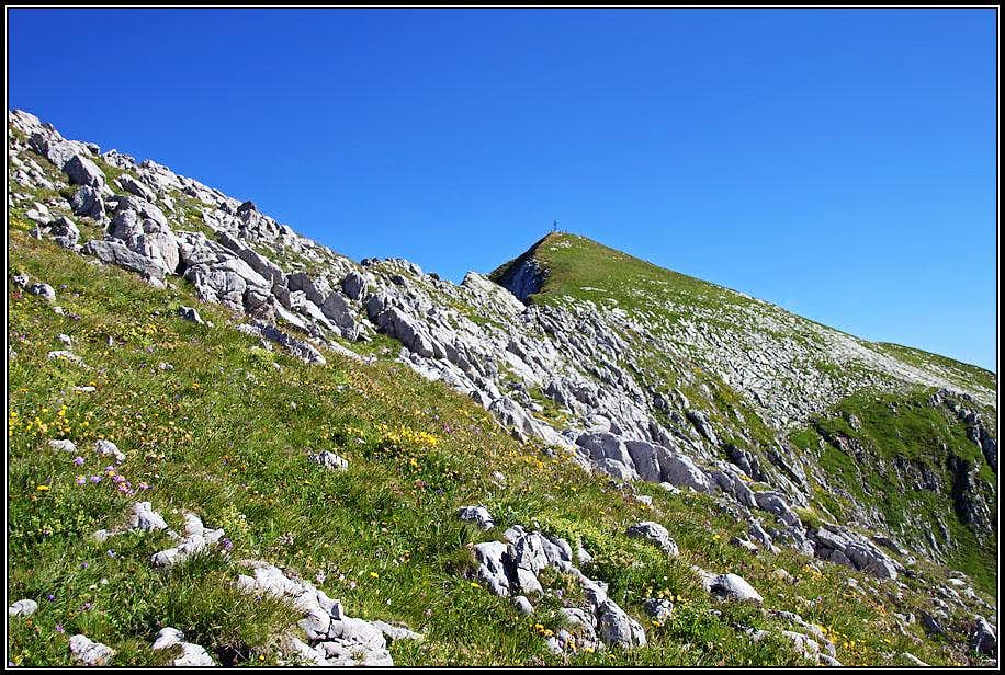The summit of Cornettes de Bise