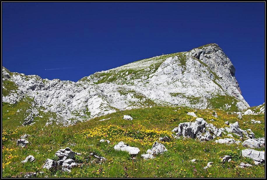 The SE slopes of Cornettes de Bise