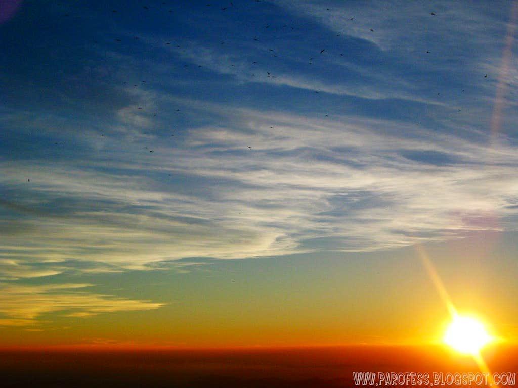 Sunrise at Monte Verde