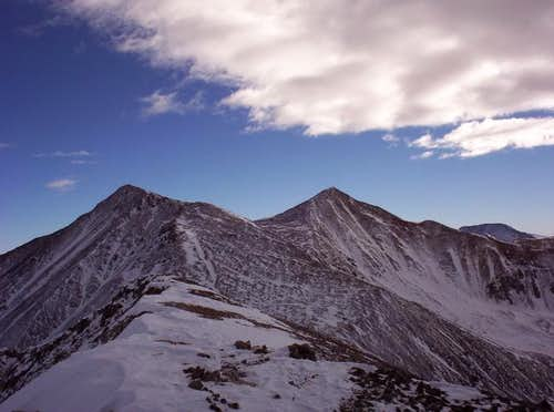 Torreys (left) and Grays...