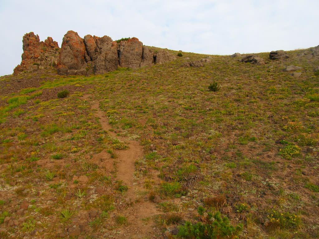 gentle upper slopes of Black Butte