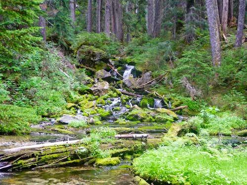 Creek Crossing on the way up Bachelor Creek