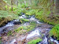 Side Creeks along Downey Creek