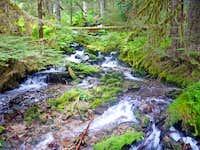 Side Creeks along Downey Creek