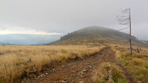 Ridge trail south from the top, looking towards Malinowa Skała