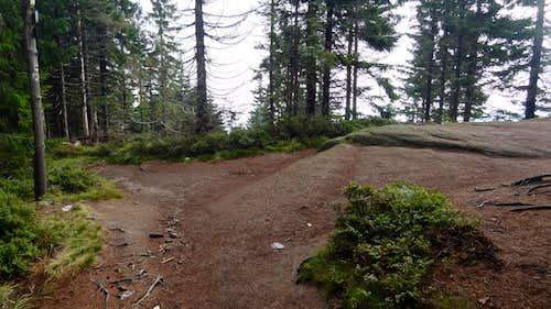 The top of Malinowa Skała hill