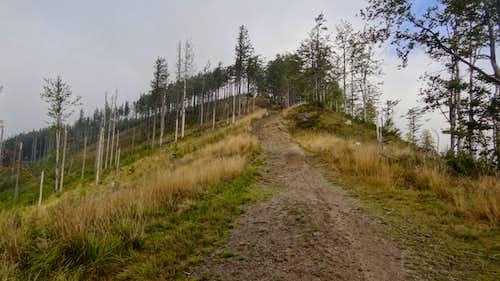 Climbing Malinów