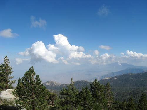 Santa Rosa Mtns. from Wellman Divide