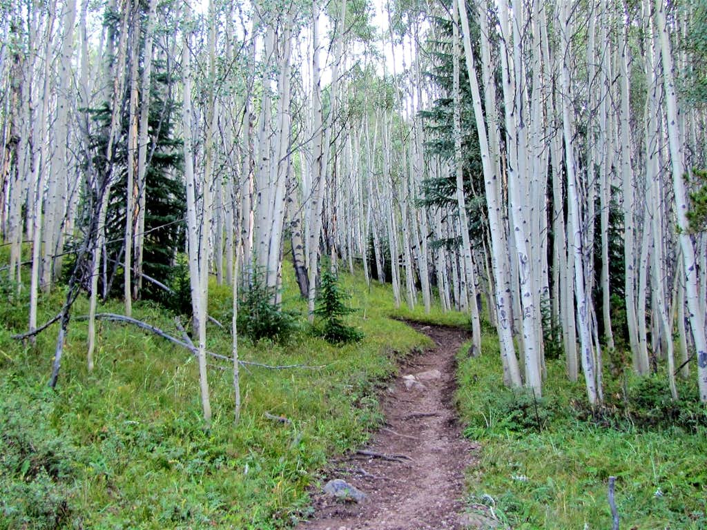 On Gore Range Trail