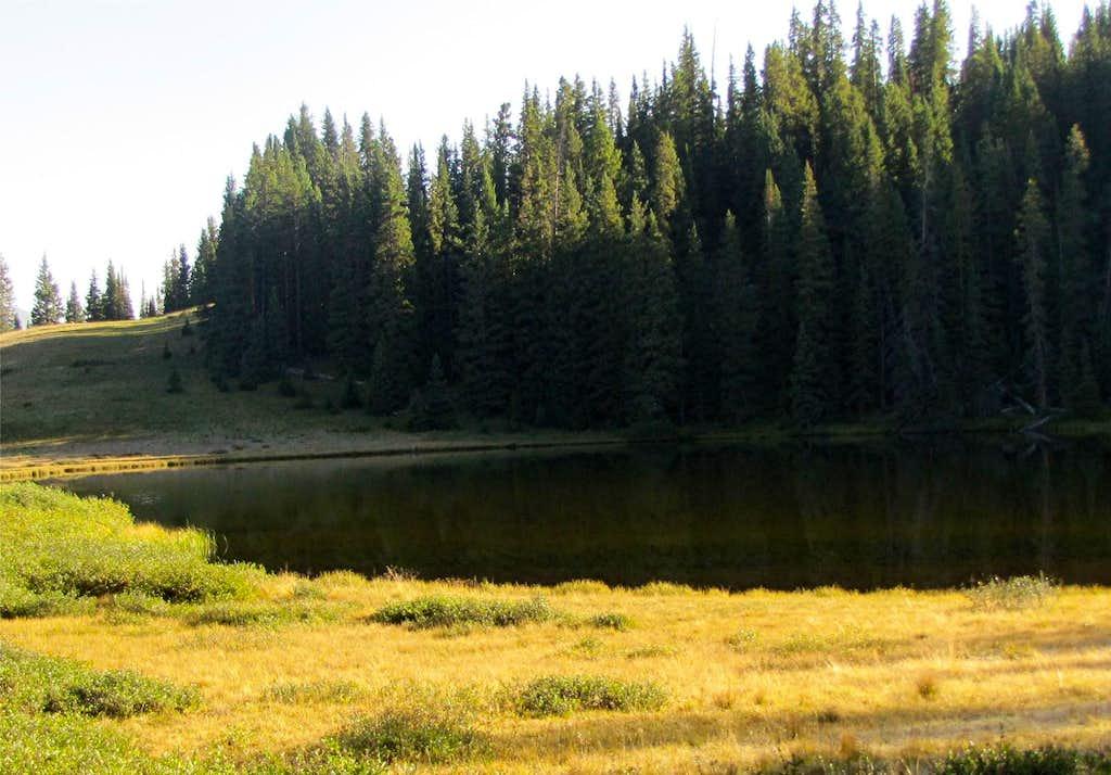 Wheeler Lake