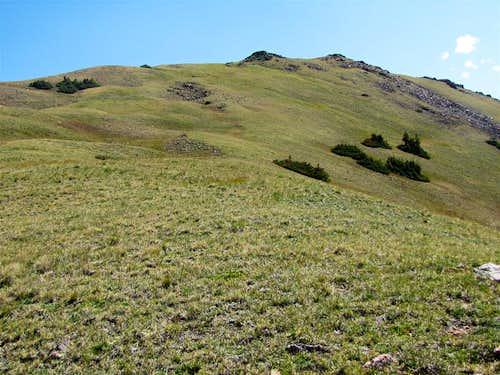 Grassy slopes of Sneva