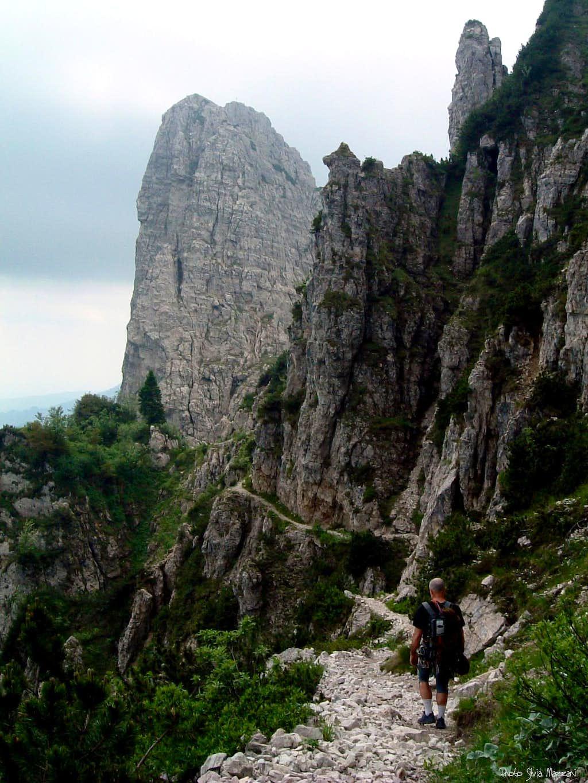 Baffelan N face from Sentiero d'Arroccamento