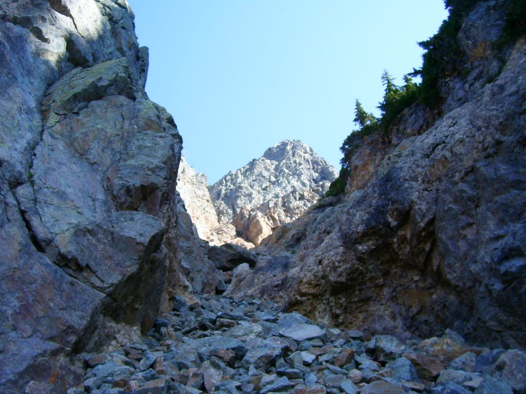 Looking up Sheep Mountain summit gully from 5500'