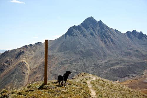 Duchess checking the mountain