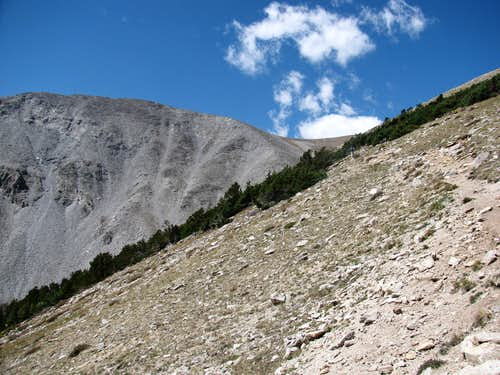 The Trail to the Shavano Saddle