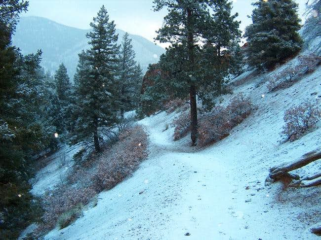 Snow covered trail going down...