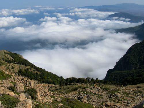 Jungles over clouds