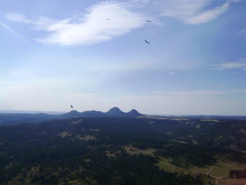 The Missouri Buttes, seen from the top of Devils Tower