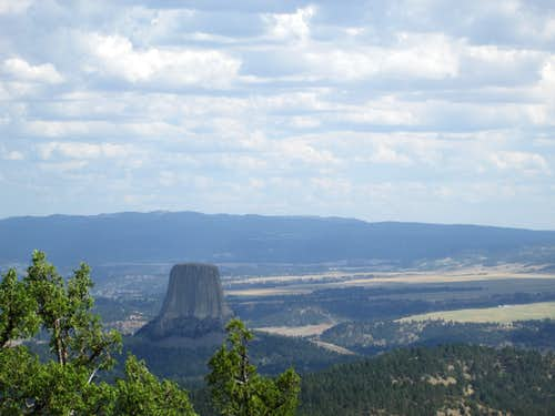 Devils Tower from above