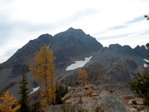 Copper Point and larches