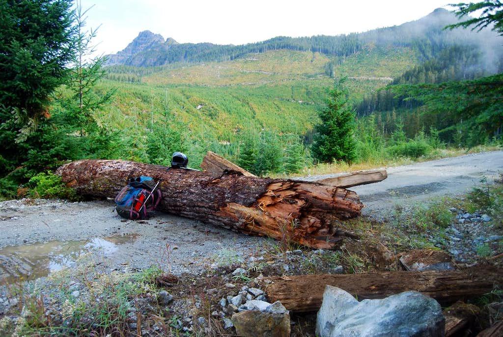 Log across w79
