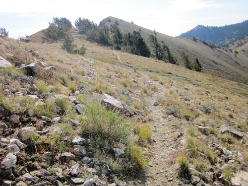 Kays Creek trail to Thurston Peak