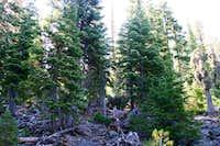 Mount Harriman's North Ridge