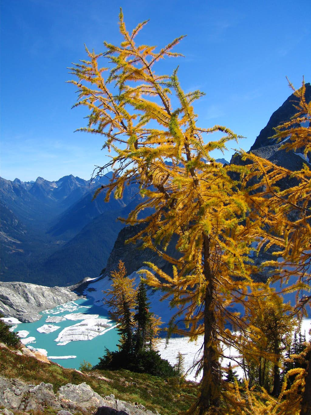Larches and Lakes