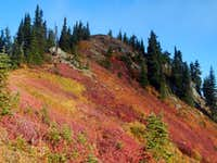 Poe Mountain Fall Colors