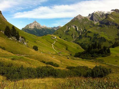 The Bürstegg pasture and Biberkopf behind