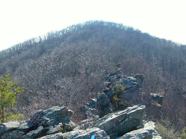 Bearfence Mountain from the...
