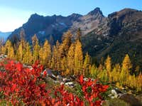 Fall Colors Porcupine Peak