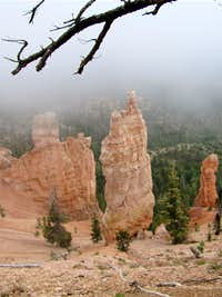 The only hoodoos that I saw