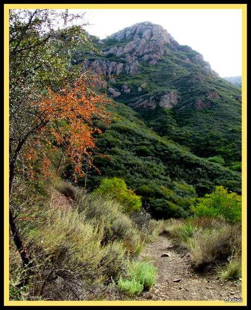 Old Boney Mountain