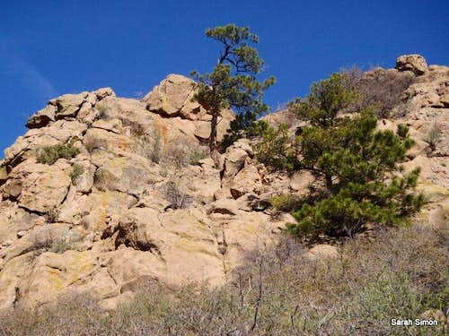 Outcrops along Tanner Trail