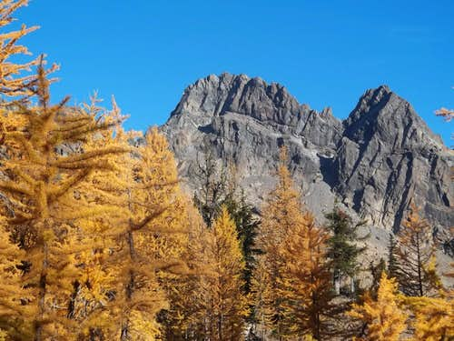 North Ingalls Peak Climb