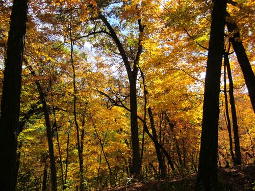 Fall Glory in Wyalusing State Park