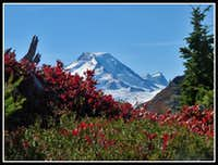 Framed Mt. Baker