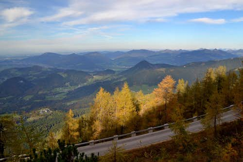 Larches next to the road to Kehlstein/Eagle\'s Nest